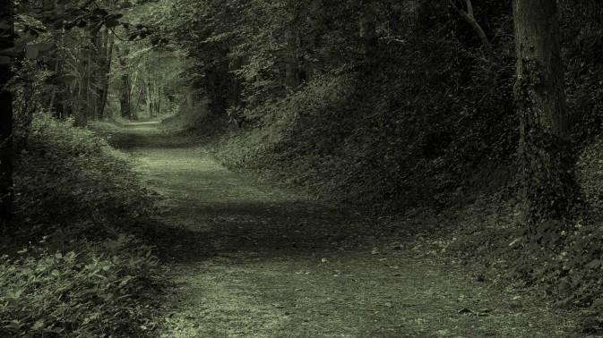 Dorsey & Whitney hidden path slider image
